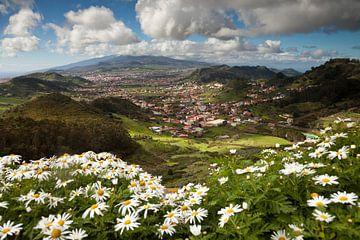 Anagagebergte, Tenerife, Canarische Eilanden van Peter Schickert