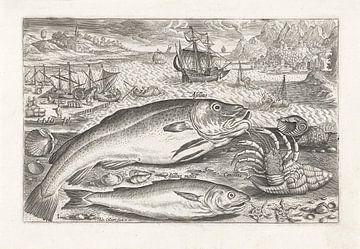 Zwei Fische am Strand von Adriaen Collaert, nach 1598 - 1618