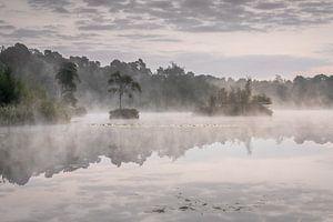 Zonsopkomst en ochtendnevel aan de Oisterwijkse Vennen van Original Mostert Photography