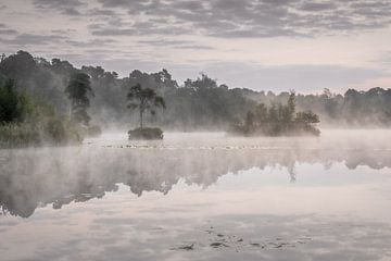 Sonnenaufgang und Morgennebel am Oisterwijkse Vennen von Original Mostert Photography