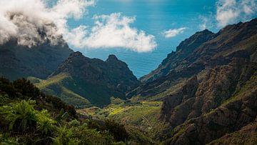 Masca op Tenerife van Martin Wasilewski