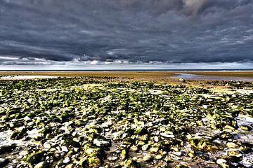Omaha Strand Normandie von Tineke Visscher