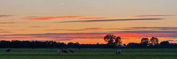Zonsondergang in juli van