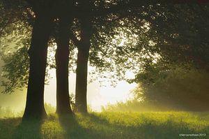 - Magic sunrise -  van Veronica van Peet