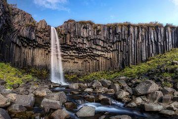 Chute d'eau de Svartifoss en Islande sur Dieter Meyrl