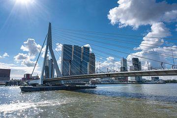 Erasmusbrug in Rotterdam aan de rivier de Nieuve-Maas, Rotterdam, Nederland. van Tjeerd Kruse