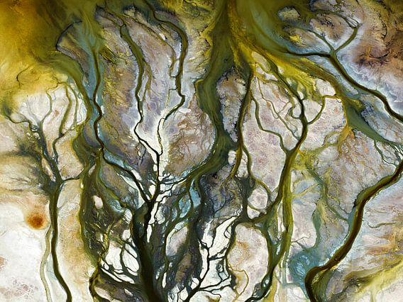 Colours of Water, Searles Lake van Marco van Middelkoop
