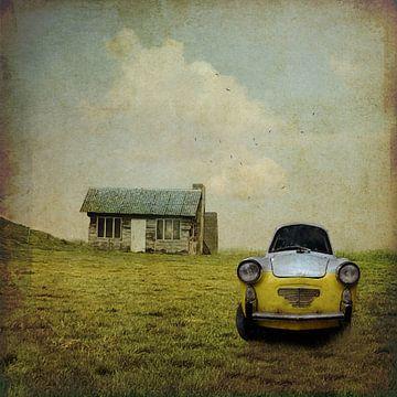 The car van Patrick Reinquin