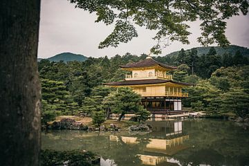 Kinkaku-ji (gouden tempel) van Sascha Gorter