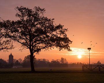 Sonnenaufgang von Daniel Van der Brug