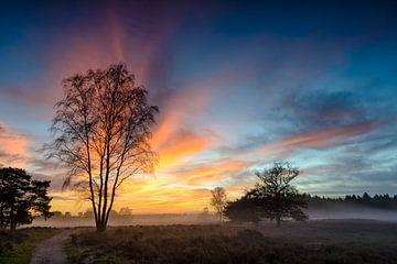 Bunter Wintersonnenuntergang über den Ebenen in der Natur von Sjoerd van der Wal