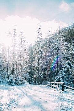 Blauer Winterwald von Patrycja Polechonska
