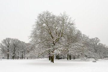 Besneeuwd winterlandschap von Merijn van der Vliet