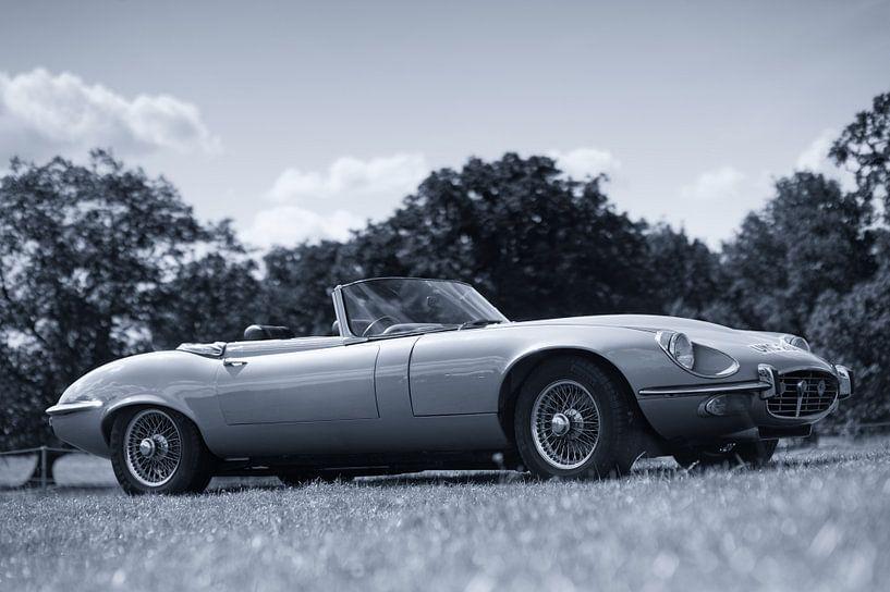 Jaguar E-Type sportscar van Atelier Liesjes
