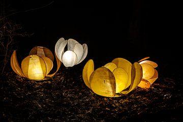 Lichtfest von Els Hattink