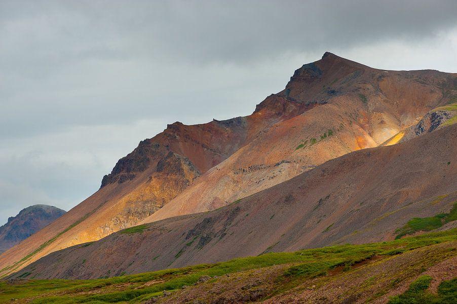 Binnenland IJsland van Richard van der Hoek