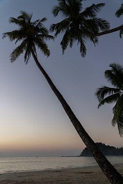 Palmbomen op het strand van Ngapali, Myanmar van Annemarie Arensen