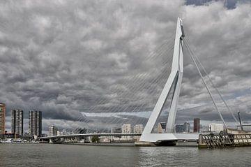 Rotterdam met de Erasmus brug. van Tilly Meijer