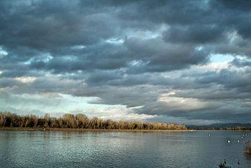 Rijn in het voorjaar van Ramunas Batovas
