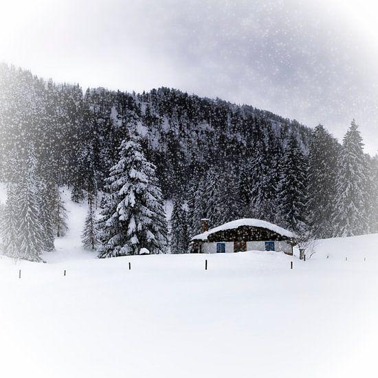 Bavarian Winter's Tale VIII