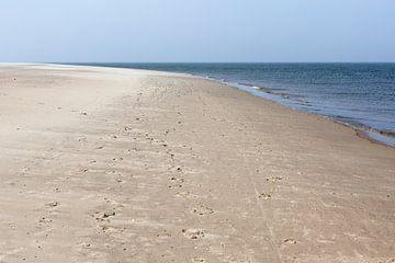 Het Strand bij Waddenzee en Noordzee van