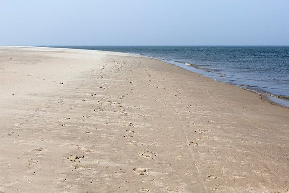 Noord-Holland / Texel / Strand bij Waddenzee en Noordzee / 2013