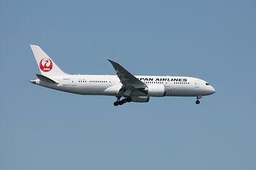 JAL Boeing 787 van Bas Berk