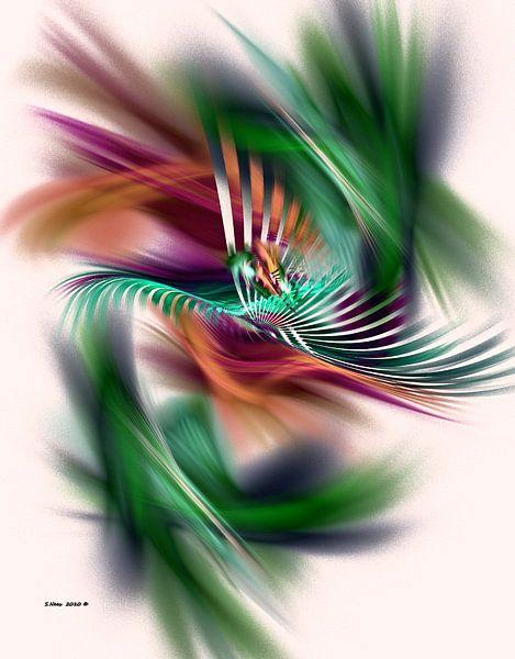 fractal (Fancy dancer) van Frans Beer