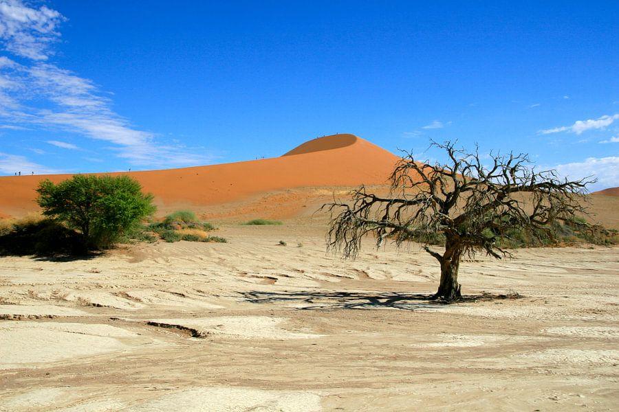 Sossusvlei, Namibië van Lyda Geeratz