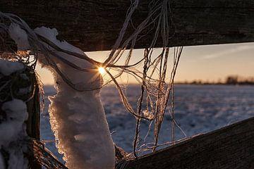 Dutch Winter von Rob van der Teen