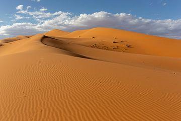 De woestijnen van de Sahara en het Landschap van Zandduinen bij Zonsopgang, Afrika van Tjeerd Kruse