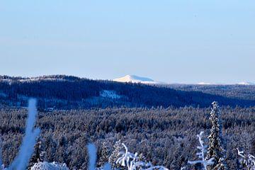 IJzige berg van Christer Andersson
