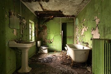 Grün verlassenes Badezimmer. von Roman Robroek