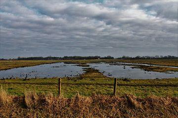 Waterland von a schotanus