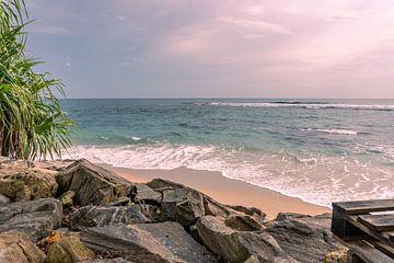 An der Küste von Nicole Nagtegaal