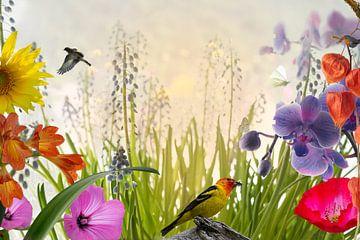 Vögel, Blumen & Schmetterlinge von Leon Brouwer