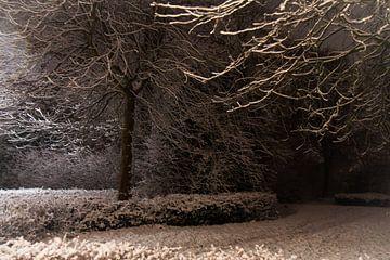 winteravond van Bianca Muntinga