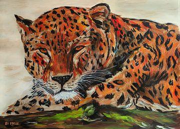 Leopard ruhend auf einem Ast von Eye to Eye Xperience By Mris & Fred