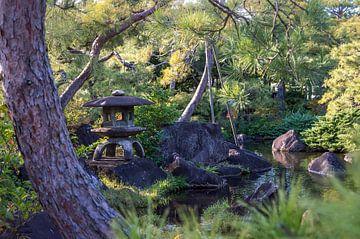 jardin japonais sur Douwe van Willigen