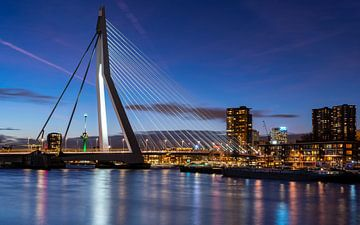 Netherlands, Rotterdam - Erasmusbridge van