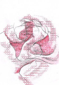 #20 Verwarring van draad - met veel rood. van Ineke van Engelen