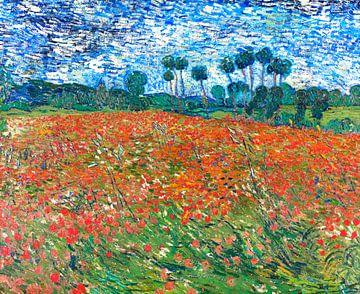 Felder mit Mohnblumen, Vincent van Gogh