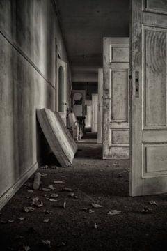 OldHaus von Tim Lee Williams