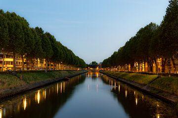 Bomenrij reflectie van Ward Van Houtte