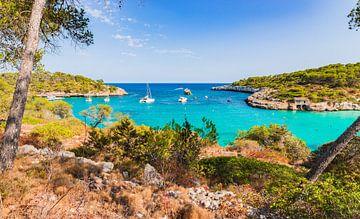 Baai met boten bij Cala Mondrago op Mallorca, Balearen van Alex Winter