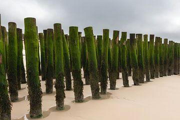 Wellenbrecher an der Opalküste in Frankreich von Gerry van Roosmalen