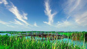 Bruggetje in Noord-Hollands landschap van Digital Art Nederland
