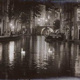 Zwanen in de Oudegracht van Jan van der Knaap