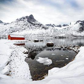 Vue panoramique hivernale sur l'île de Senja au nord de la Norvège sur Sjoerd van der Wal
