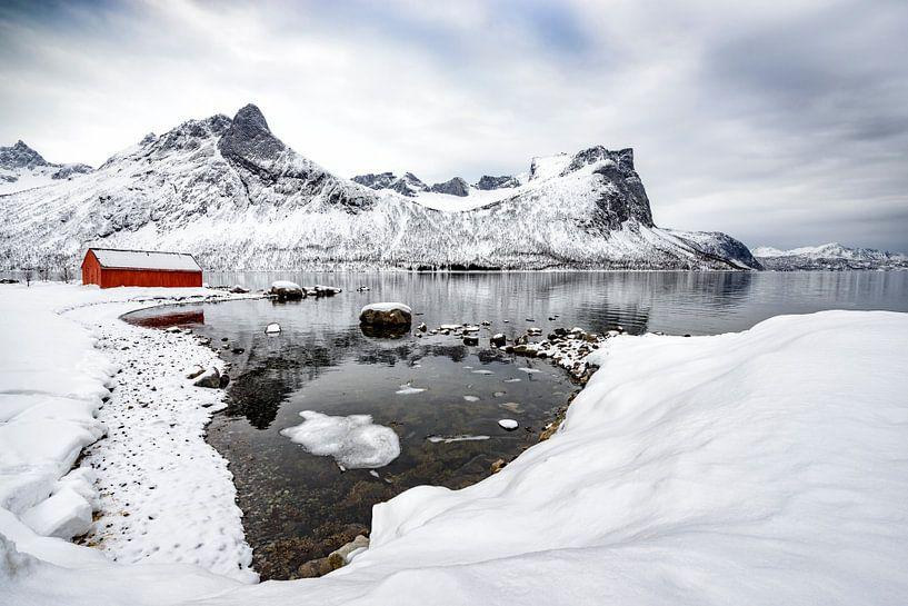 Winterpanorama op het eiland Senja in Noord-Noorwegen van Sjoerd van der Wal